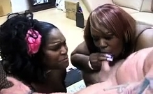 Hot Fat Bbw Ebony Fingered By Black Guy